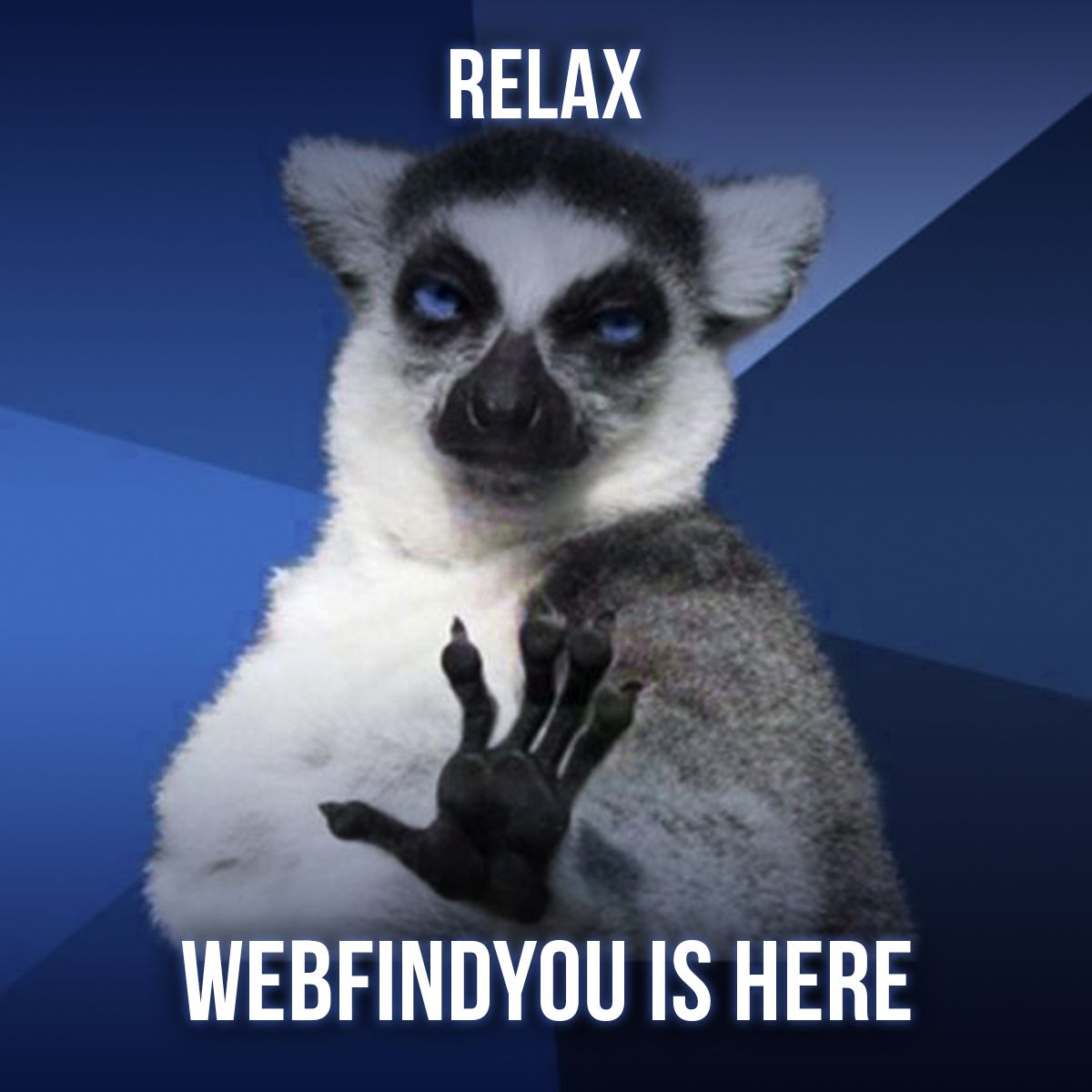 Relax WebFindYou is Here